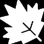 Fall Fest icon